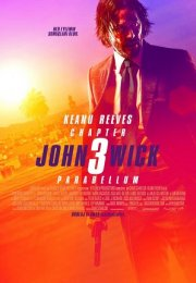 John Wick 3 Parabellum Türkçe Dublaj izle